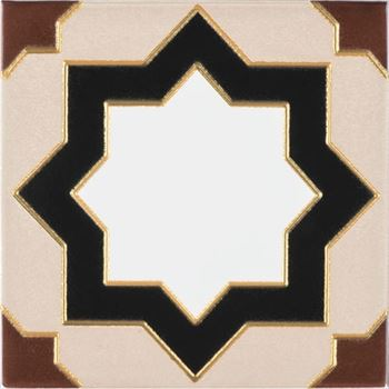 (43MC-209) ÇİNİ KARO